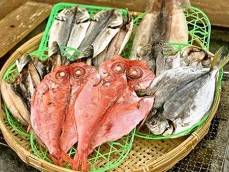 獲れたて魚を干物に。地魚干物セット